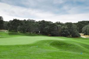 Golf Real Sociedad Hípica Española y Club de Campo24