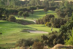 La Dehesa Golf Madrid14
