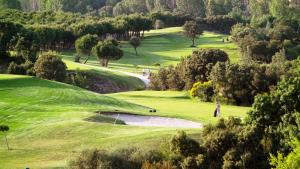 La Dehesa Golf Madrid8