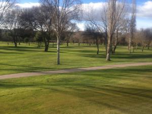 Golf Lomas Bosque10