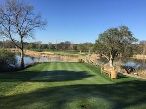 Golf Lomas Bosque11