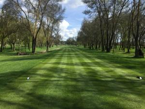 Golf Lomas Bosque12