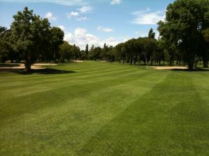 Golf Lomas Bosque2