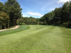 Golf Lomas Bosque4