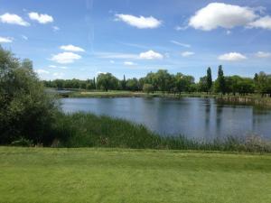 Golf Lomas Bosque5