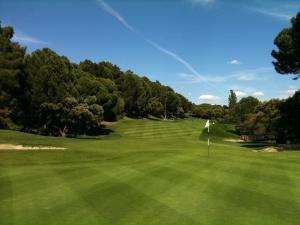 Golf Lomas Bosque7